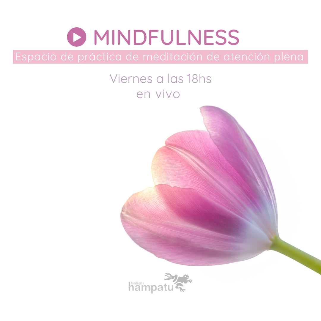 mindfulness encuentros